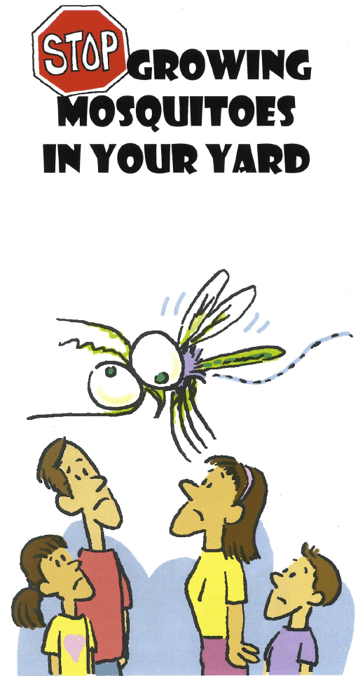 Stop growing mosquitoes in your backyard